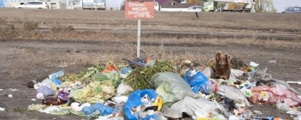 Проект мусоросжигательного завода в столице Татарстана будет рассмотрен правительством России