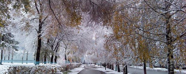Тротуары в Казани будут чиститься совершенно новой техникой