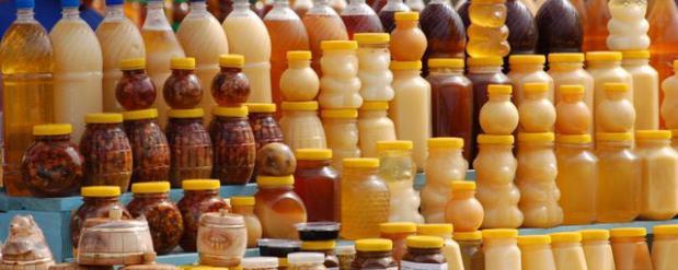 В Казань съехались пчеловоды со всей России, чтобы похвалиться своим медом